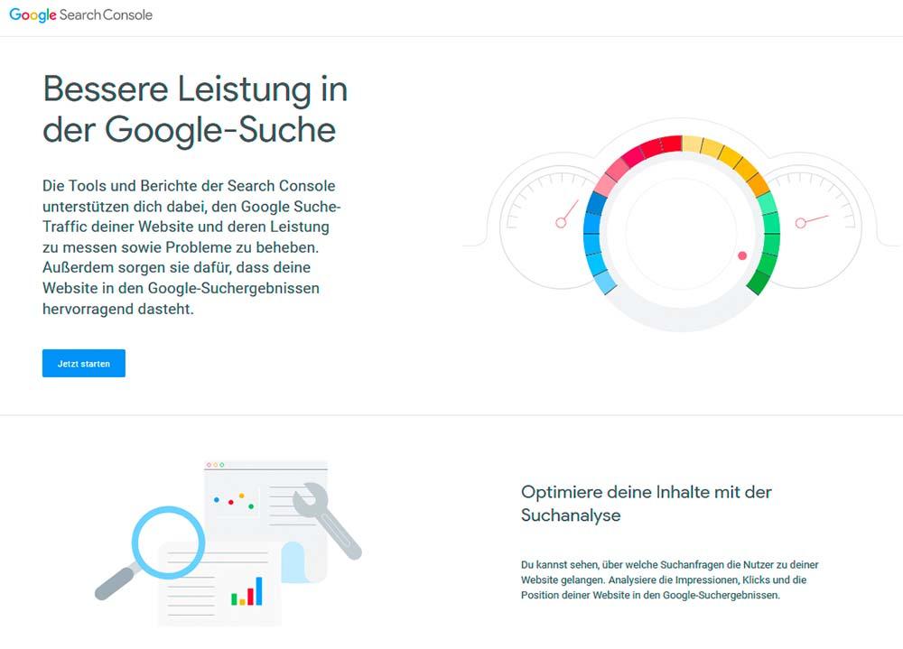Screenshot Google Search Console