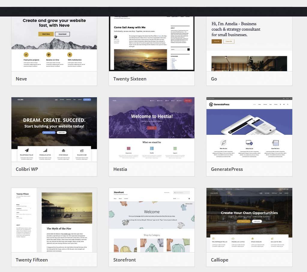 Screenshot WordPress Themes